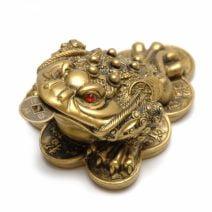 Broasca raioasa cu siraguri de monede, remediu Feng Shui pentru bani, prosperitate, abundenta si bunastare