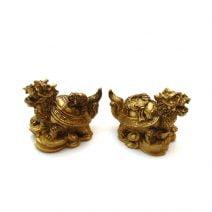 Testoase dragon cu pui si monede, remediu Feng Shui pentru bunastare, noroc si protectie
