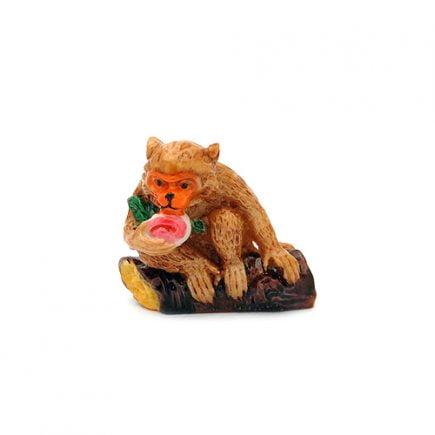 Maimuta colorata-0