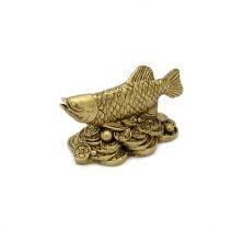 Peste arrowana pentru abundenta auriu, Remediu Feng Shui pentru bogatie si bani