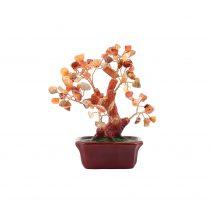 Copac-cu-agate-pe-suport-dreptunghiular-ceramic mic