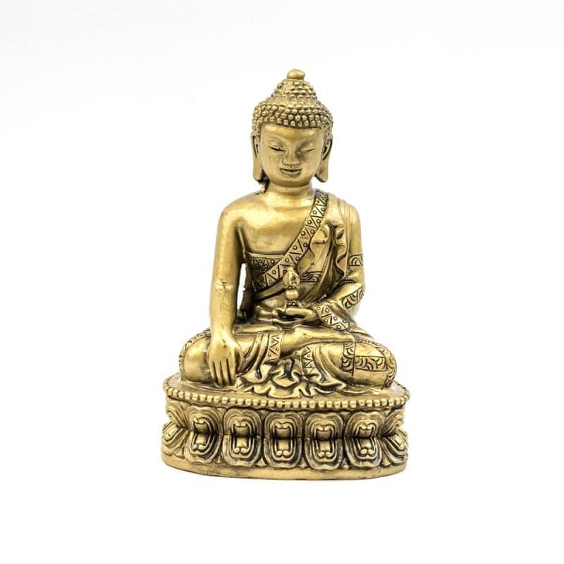 Statueta cu Buddha medicinei -5440