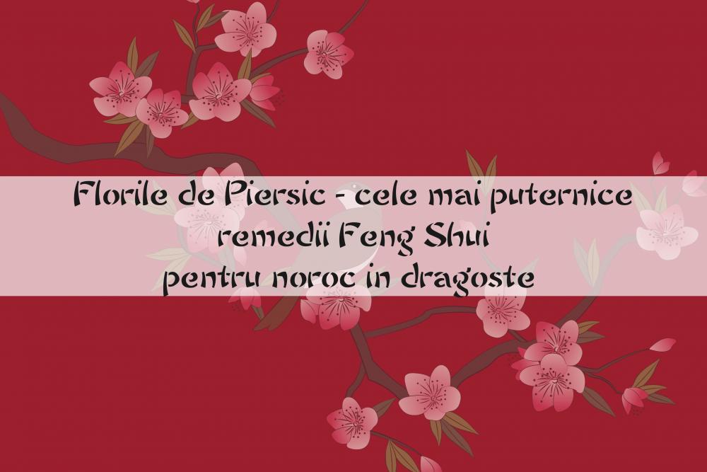Florile de Piersic - cele mai puternice remedii Feng Shui pentru dragoste