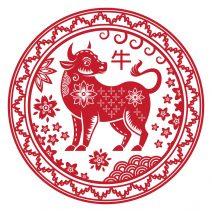 autocolant stiker feng shui cu zodia bivol mare