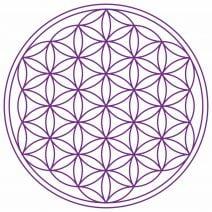 8091 Abtibild cu Floarea Vietii , Simbolul vietii - Violet mare